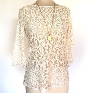 Ann Taylor Loft Ivory Lace Crew Neck Sheer Top